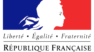 french-embassey-logo-afindia